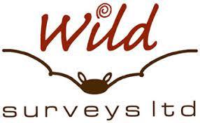 wild surveys